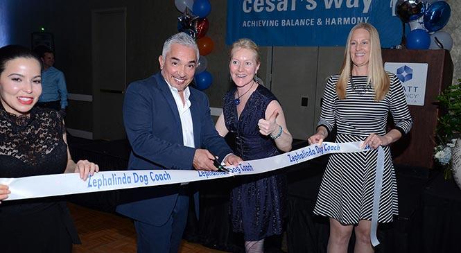 Opening door Cesar Millan